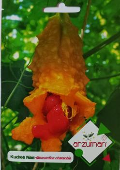 Kudret Narı Çiçeği Tohumu