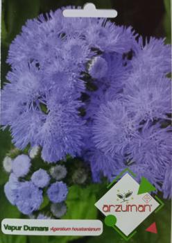 Vapur Dumanı Çiçeği Tohumu